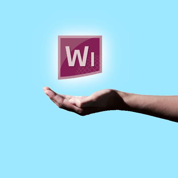 winsure-580x580